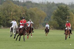 2008 Polo Season