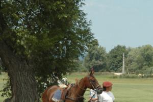 Polo Life in Hungarian Polo Club
