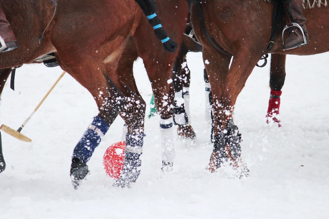 2013 0 snowpolo-
